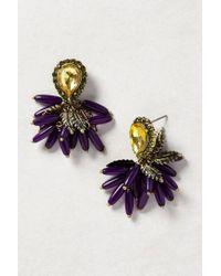 BaubleBar | Purple Bougainvillea Earrings | Lyst