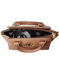 Ted Baker | Brown Minibow | Lyst