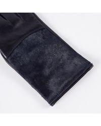Paul Smith - Blue Women's Navy Leather Calf Hair Panel Gloves - Lyst