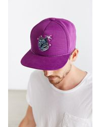 Coal - Purple The Lore Tiger Snapback Hat for Men - Lyst