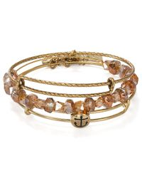 ALEX AND ANI - Brown Exclusive Anchor Bangles Set Of 3 - Lyst