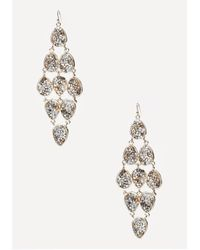 Bebe Metallic Crushed Crystal Earrings