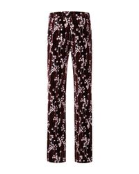 Giamba - Purple Lily Of The Valley Smooth Velvet Relaxed Pants - Lyst