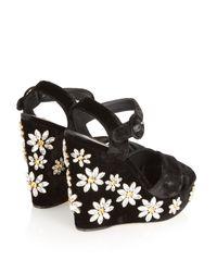 Dolce & Gabbana - Black Daisy Crystal-Embellished Velvet Wedges - Lyst