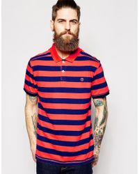 Timberland Blue Polo With Stripe for men