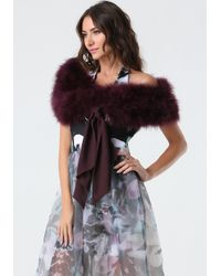 Bebe - Purple Tie Front Feather Collar - Lyst