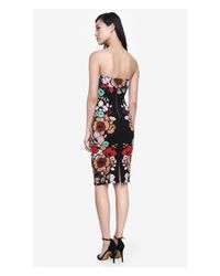 Express Black Strapless Placed Floral Print Tube Dress