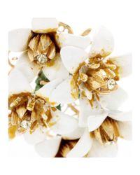 Dolce & Gabbana | White Crystalembellished Enamel Clipon Earrings | Lyst
