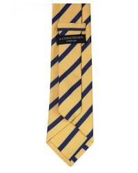 Amanda Christensen Blue Stripe Silk Tie for men