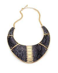 ABS By Allen Schwartz | Black Snakeskinprint Faux Leather Collar Necklace | Lyst