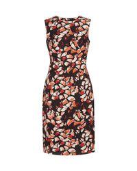 Hobbs | Multicolor Penrose Dress | Lyst