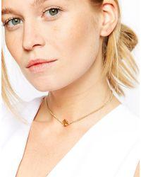 ASOS Metallic Ditzy Rose Choker Necklace
