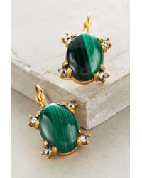 Elizabeth Cole | Green Alpine Drops | Lyst