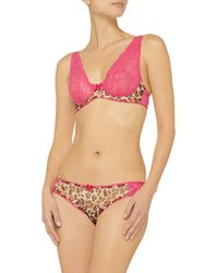 Mimi Holliday by Damaris Multicolor Cheeky Minx Lace And Chiffon Underwired Bra