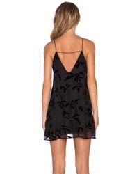 The LDRS Black Velvet Leaf Dress