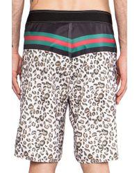 Stussy Black Rich Cat Swim Shorts for men