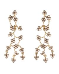 Lulu Frost | Metallic Gold-plated Ortigia Earrings | Lyst
