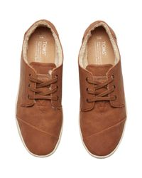 TOMS Brown Paseos Lace Up Plimsolls