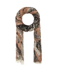 Michael Stars - Brown Painted Feathers Scarf in Blush - Lyst