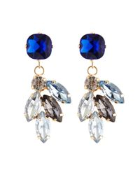 Coast | Blue Luisa Earrings | Lyst