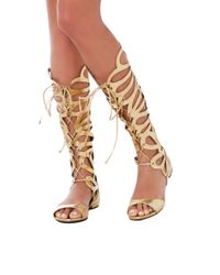 AKIRA Metallic Knee High Lace Up Cut Out Gold Gladiator Sandals