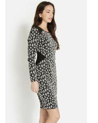 Oasis Gray Sparkle Animal Bodycon Dress