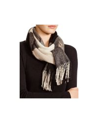 C By Bloomingdale's Black Colorblocked Cashmere Scarf