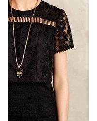 Anna Sui   Black Eventide Embroidered Organza Dress   Lyst