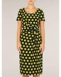 Precis Petite Multicolor Black and Fennel Spot Print Jersey Dress
