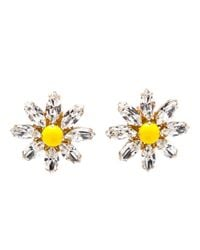 Dolce & Gabbana | Yellow Daisy Crystal Earrings | Lyst