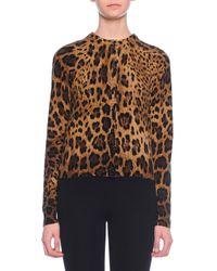 Dolce & Gabbana Multicolor Leopard-Print Cashmere Knit Cardigan