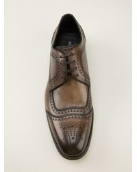 Dolce & Gabbana - Brown Brogue Detailed Derby Shoes for Men - Lyst