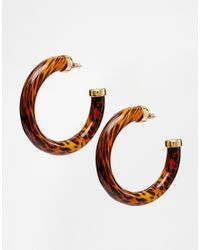 Kenneth Jay Lane - Brown Tortoiseshell Hoop Earrings - Lyst