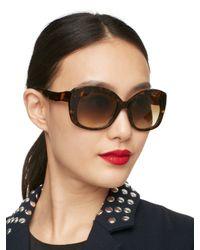 kate spade new york Brown Jakalyn Sunglasses