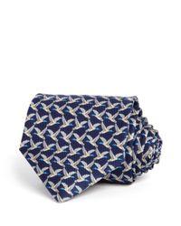 Ferragamo   Blue Duck Classic Tie for Men   Lyst