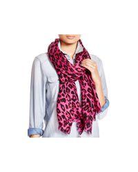 kate spade new york Pink Cheetah-print Oblong Scarf