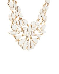 ALDO Metallic Bilecika Pretty Collar Necklace