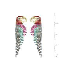 Elizabeth Cole | Metallic Parrot Earrings | Lyst
