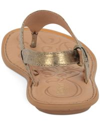 Born Metallic Mariel Flat Thong Sandals