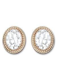 Swarovski - Metallic Arrive Rose Goldtone And Crystal Oval Earrings - Lyst