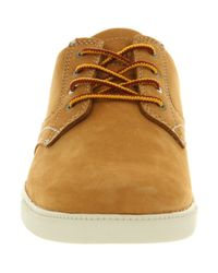 Timberland Brown Newmarket Cup Sole Wheat Nubuck for men