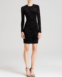 Ronny Kobo Black Dress Magnolia Flocked Zebra