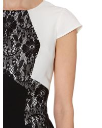 Adrianna Papell Black Lace Colour Block Gown