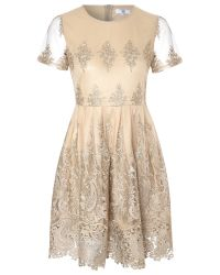 True Decadence | Metallic Lace Skater Dress | Lyst