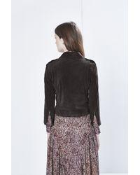 Rebecca Minkoff Brown Wes Moto Jacket