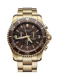 Victorinox - Brown 'maverick' Chronograph Bracelet Watch for Men - Lyst