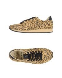 Shoe The Bear | Yellow Low-tops & Trainers | Lyst