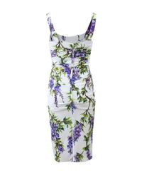 Dolce & Gabbana Multicolor Ruched Wisteria Dress
