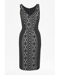 French Connection Black Natalia Lace Dress