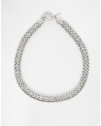 Coast | Metallic Snake Choker Necklace | Lyst